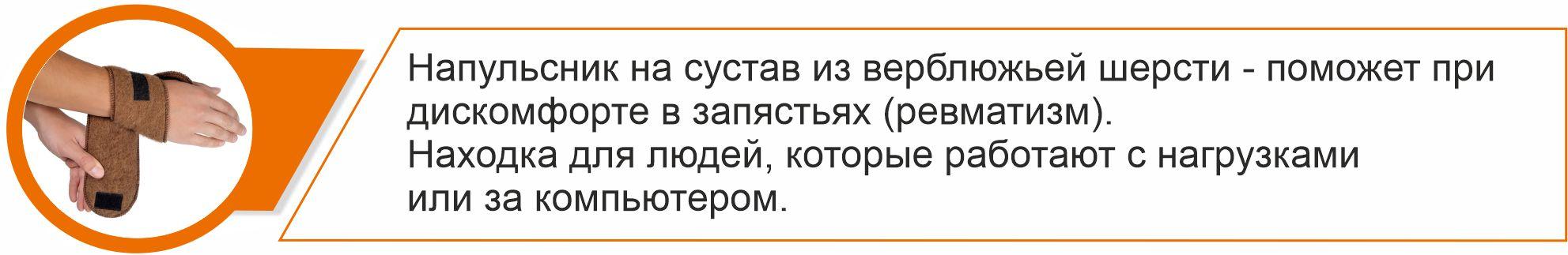 рус. ВШ напульсник текст