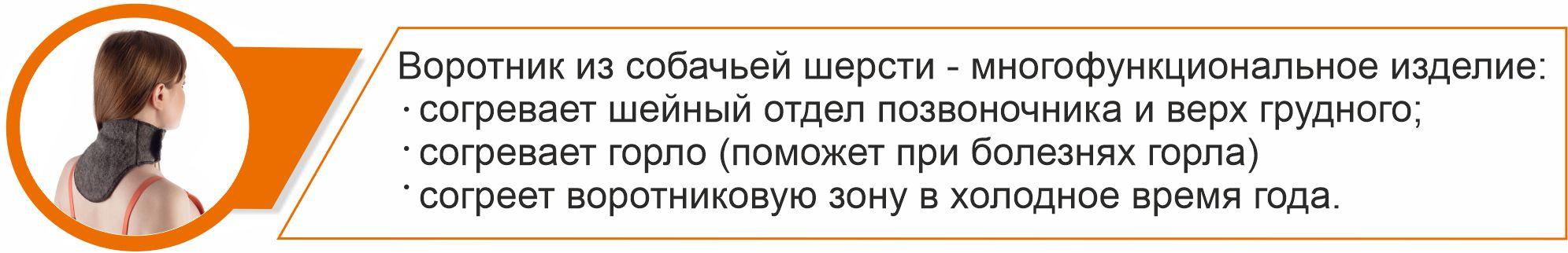 рус. СШ воротник текст